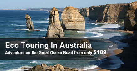 Great Ocean Road Eco Tour
